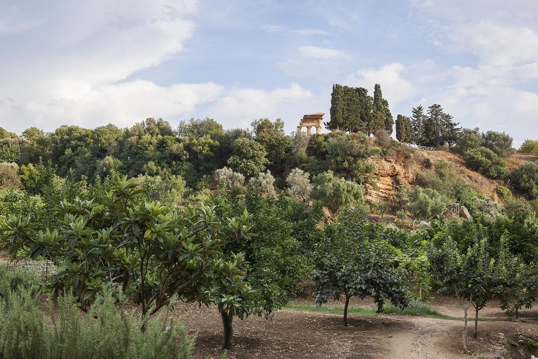 Giardini della Kolymbethra AG, Foto di Vincenzo Cammarata,2013 © FAI - Fondo Ambiente Italiano