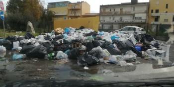 Vincenzella-5-750x375